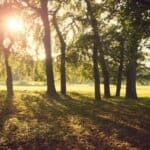 best parks and gardens in lahore